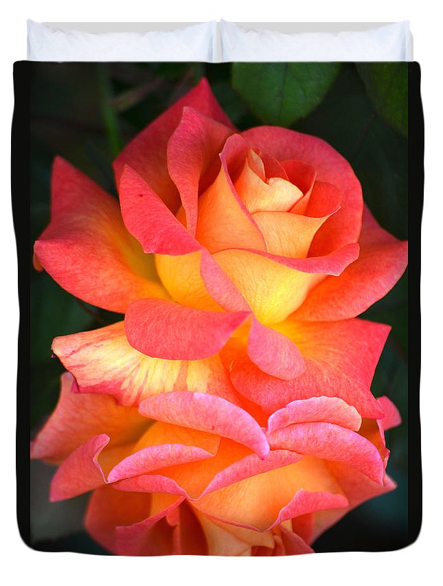 Multi Colored Roses Duvet Cover featuring the photograph Roses Of Many Colors by Deb Halloran
