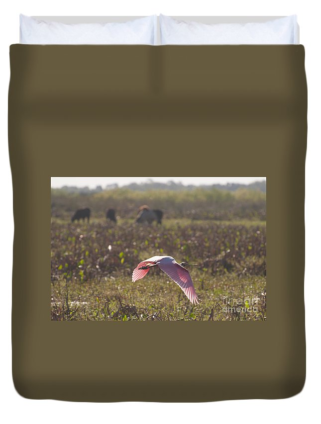 Roseatte Duvet Cover featuring the photograph Rosy In The Field by Photos By Cassandra