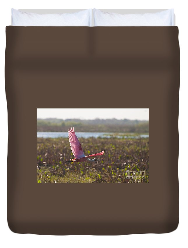 Roseatte Duvet Cover featuring the photograph Rosy Soar by Photos By Cassandra