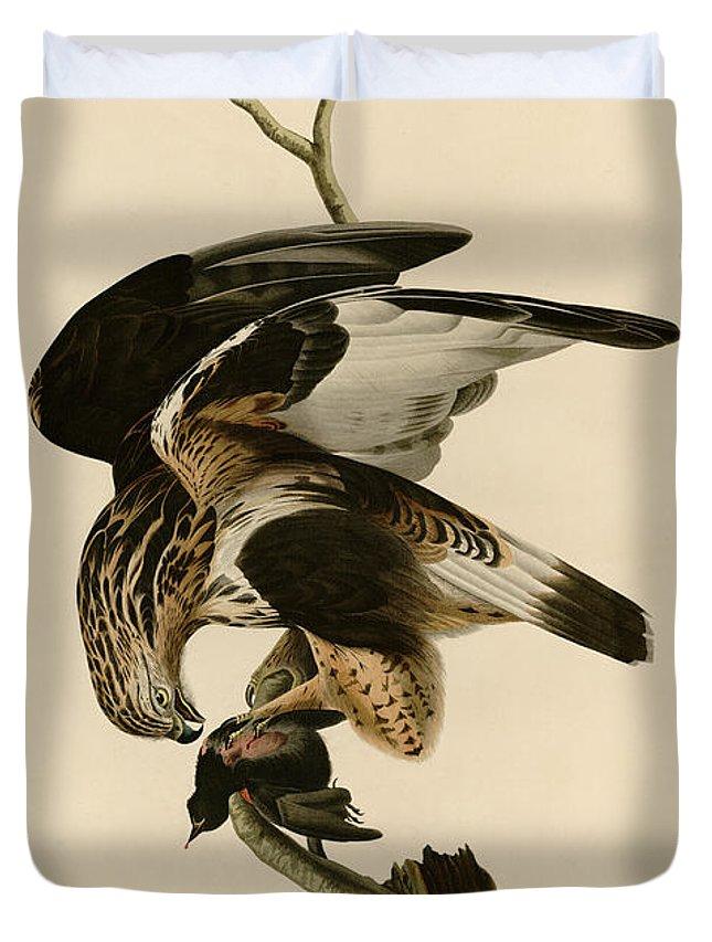 John James Audubon Duvet Cover featuring the painting Rough-legged Falcon by Celestial Images