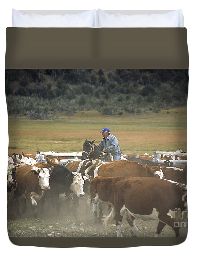 Cowboy Duvet Cover featuring the photograph Cattle Round Up Patagonia by James Brunker