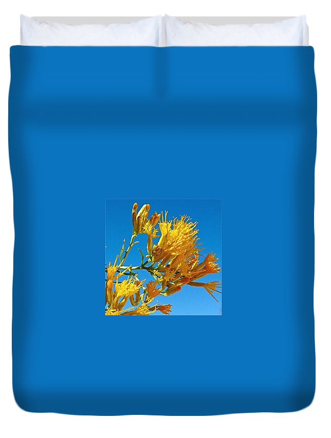 Rubber Rabbitbrush In Off Hole-in-the-rock Road In Grand Staircase-escalante National Monument Duvet Cover featuring the photograph Rubber Rabbitbrush Off Hole-in-the-rock Road In Grand Staircase Escalante National Monument-utah by Ruth Hager
