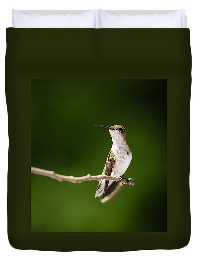 Hummingbird Duvet Cover featuring the photograph Ruby-throated Hummingbird by Christy Cox