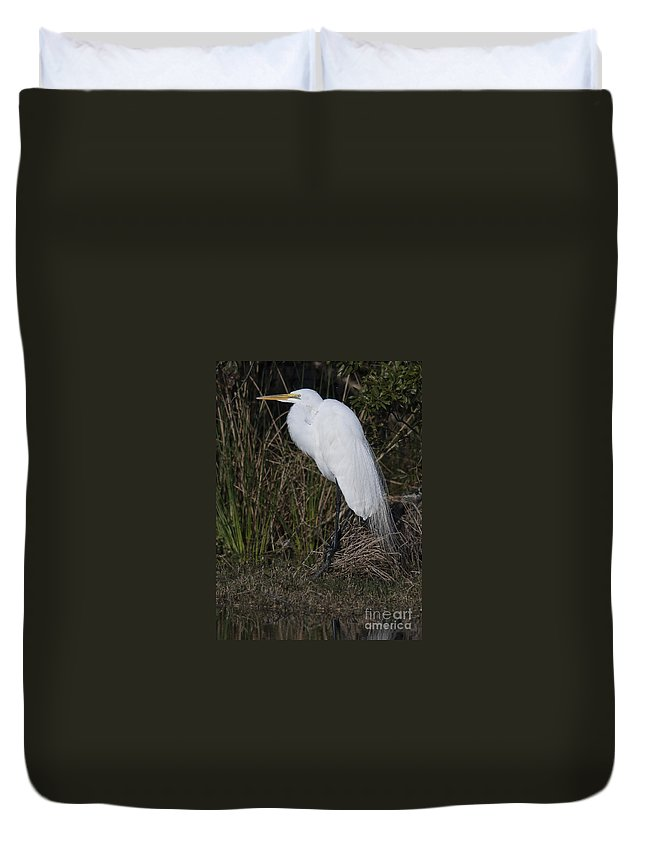 Great Duvet Cover featuring the photograph Ruffled Feathers by Dale Powell