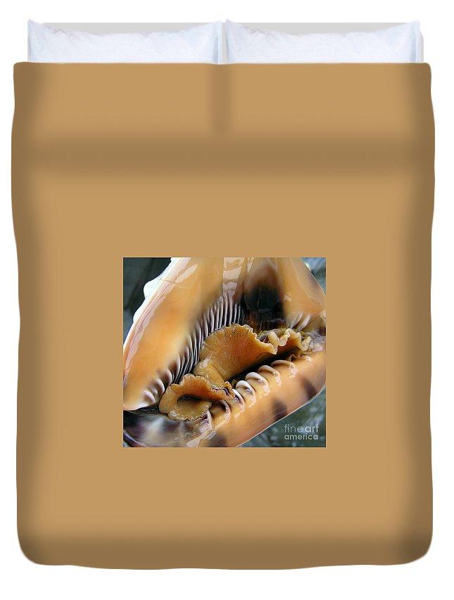Conch Duvet Cover featuring the photograph Ruffles Have Ridges by Li Newton