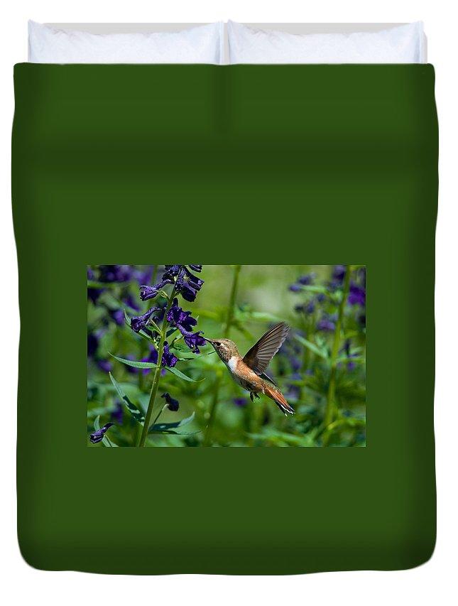 Bird Duvet Cover featuring the photograph Rufous Hummingbird by Gerald DeBoer