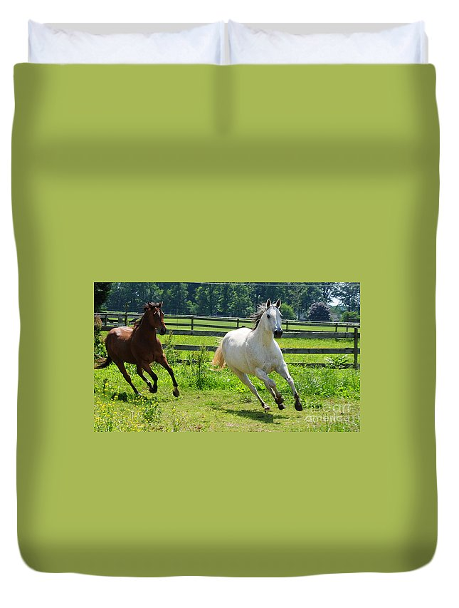 Two Horses Duvet Cover featuring the photograph Running Wild by Paul Ward