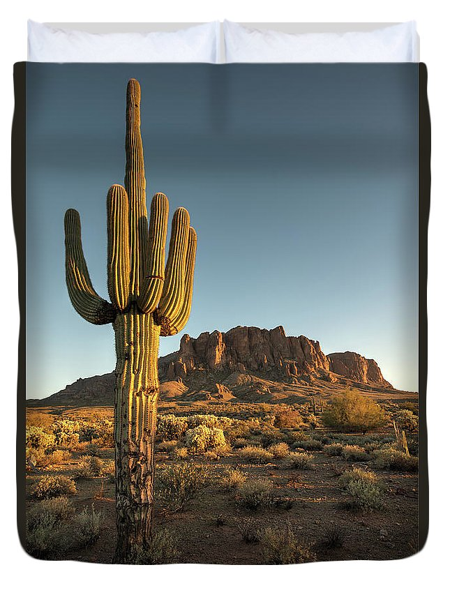 Saguaro Cactus Duvet Cover featuring the photograph Saguaro Cactus And Superstition by Kjschoen