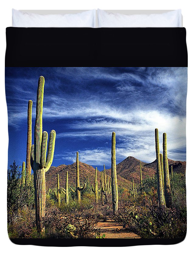 Art Duvet Cover featuring the photograph Saguaro Cactuses In Saguaro National Park by Randall Nyhof