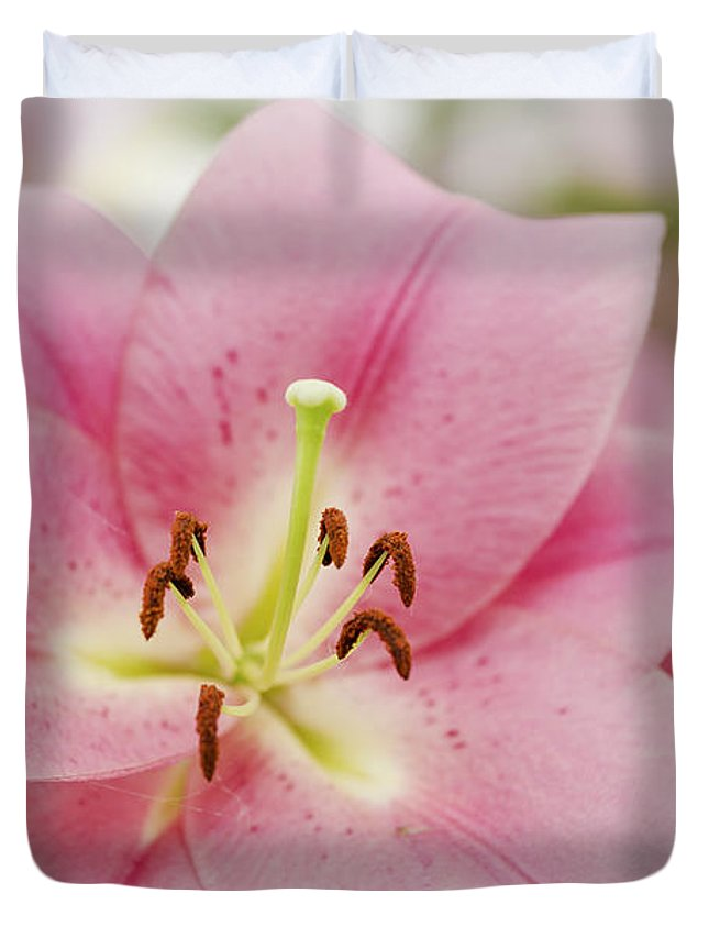 Lily Duvet Cover featuring the photograph Pink Lily by Maj Seda