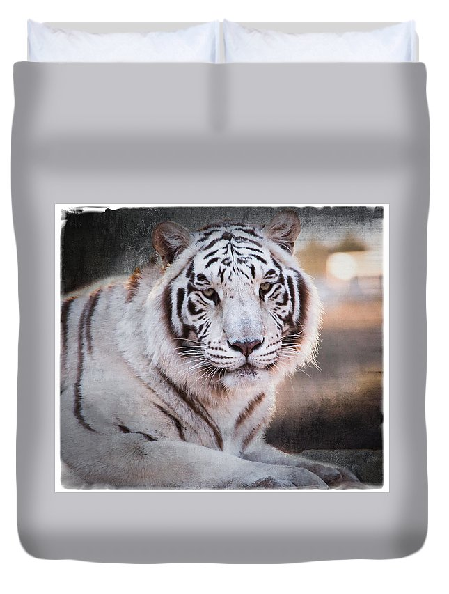 Tiger Duvet Cover featuring the photograph Samara 3 by Diane Wood