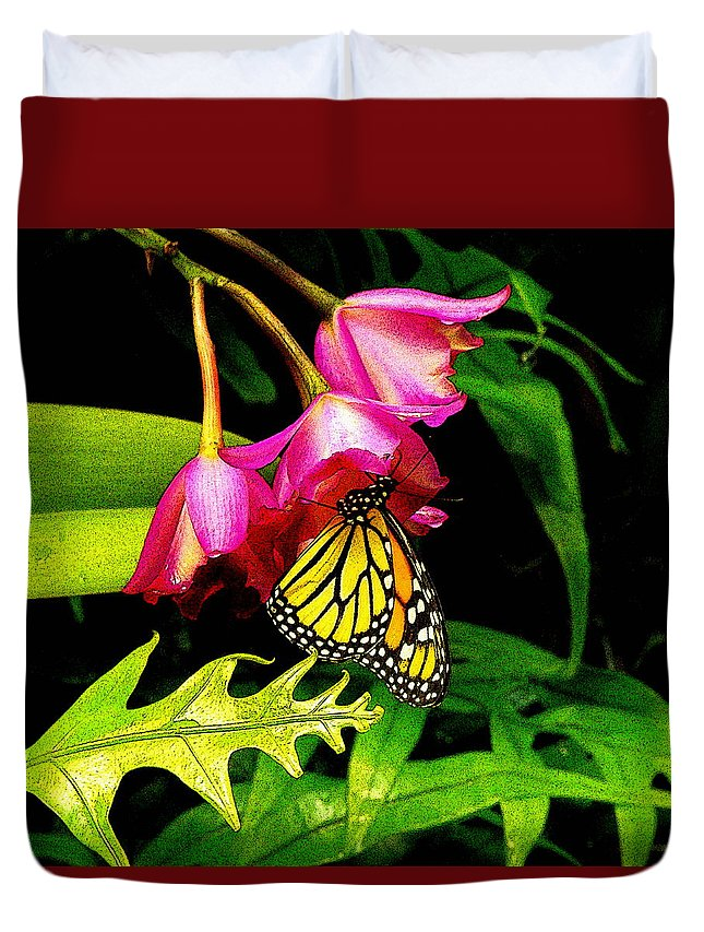 Fine Art Duvet Cover featuring the photograph Sanctuary by Rodney Lee Williams