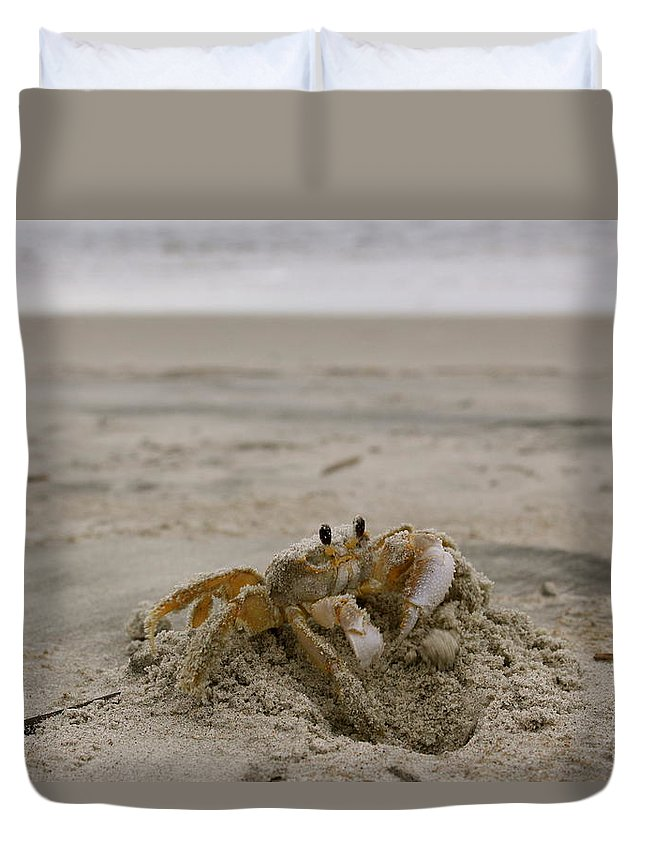 Sand Duvet Cover featuring the photograph Sand Crab by Nelson Watkins