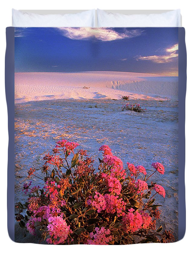 North America Duvet Cover featuring the photograph Sand Verbenas At Sunset White Sands National Monument by Dave Welling