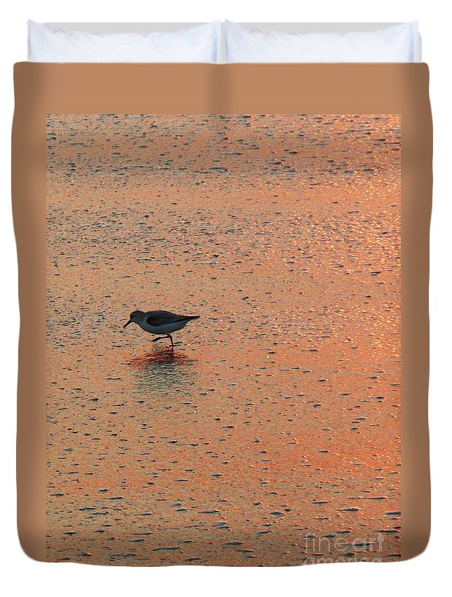 Beach Duvet Cover featuring the photograph Sandpiper On Shoreline by Eric Schiabor