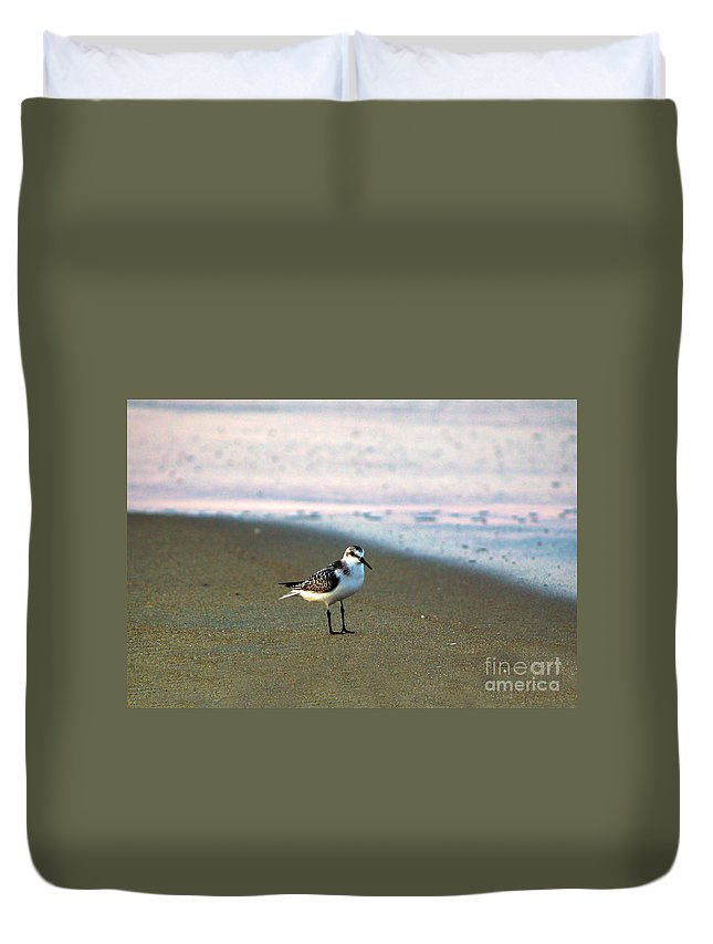 Bird Photography Duvet Cover featuring the photograph Sandpiper by Patricia Griffin Brett