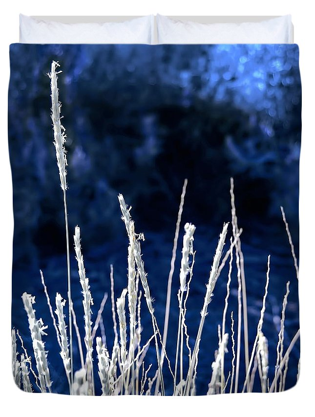 Digital Enhanced Color Photo Duvet Cover featuring the digital art Santa Fe Grass 1 by Tim Richards