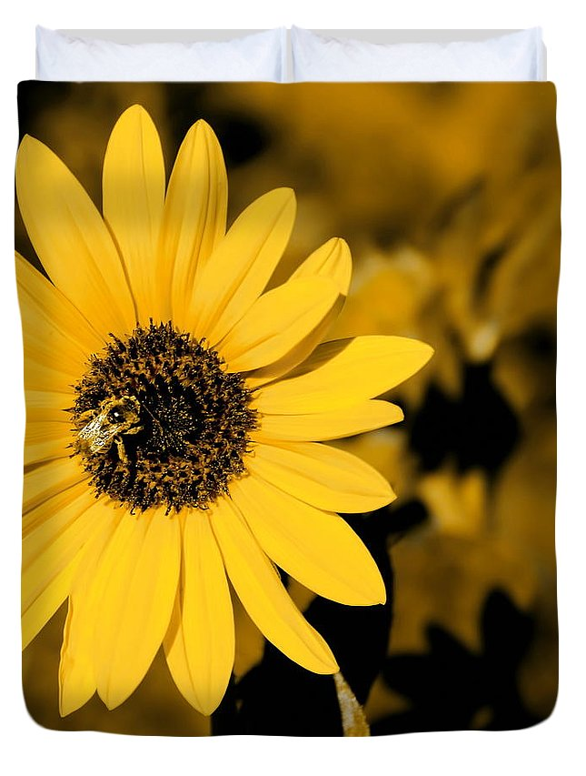 Digital Altered Photo Duvet Cover featuring the digital art Santa Fe Sunflower 1 by Tim Richards