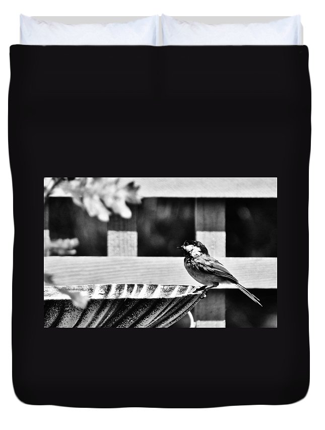 Bird Duvet Cover featuring the photograph Savoring The Moment by VLee Watson