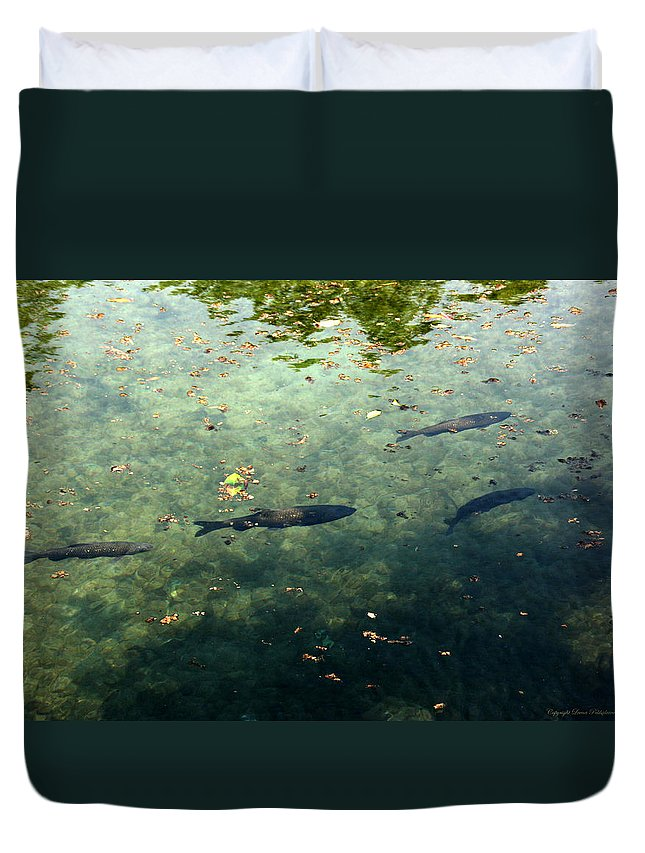 Fish Duvet Cover featuring the photograph School Of Fish by Leena Pekkalainen