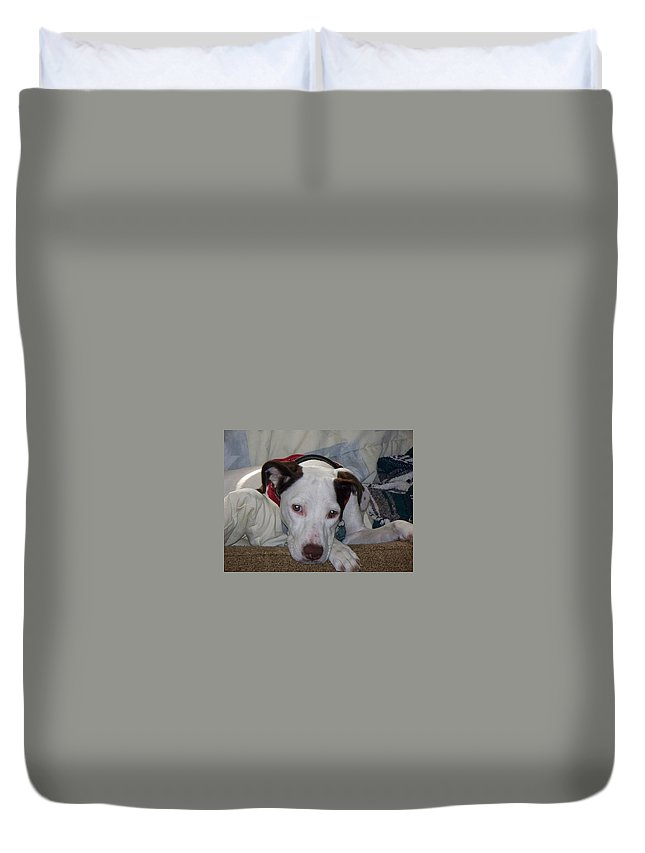 Dog Duvet Cover featuring the photograph Scout by Lisa Wormell