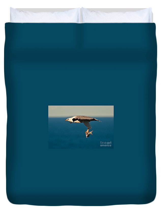 Sea Eagle Duvet Cover featuring the photograph Sea Eagle With Catch by Michael Nau