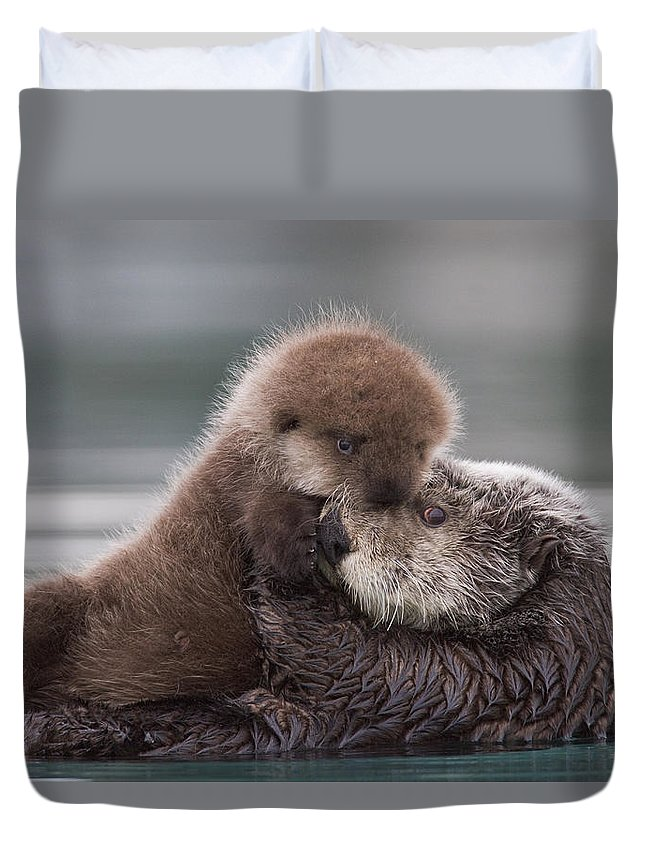 Affection Duvet Cover featuring the photograph Sea Otter Holding Newborn Pup by Milo Burcham