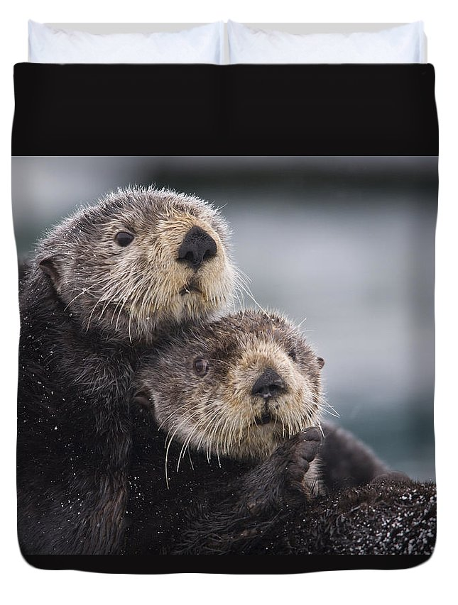 050710 Duvet Cover featuring the photograph Sea Otters Huddled Together by Milo Burcham