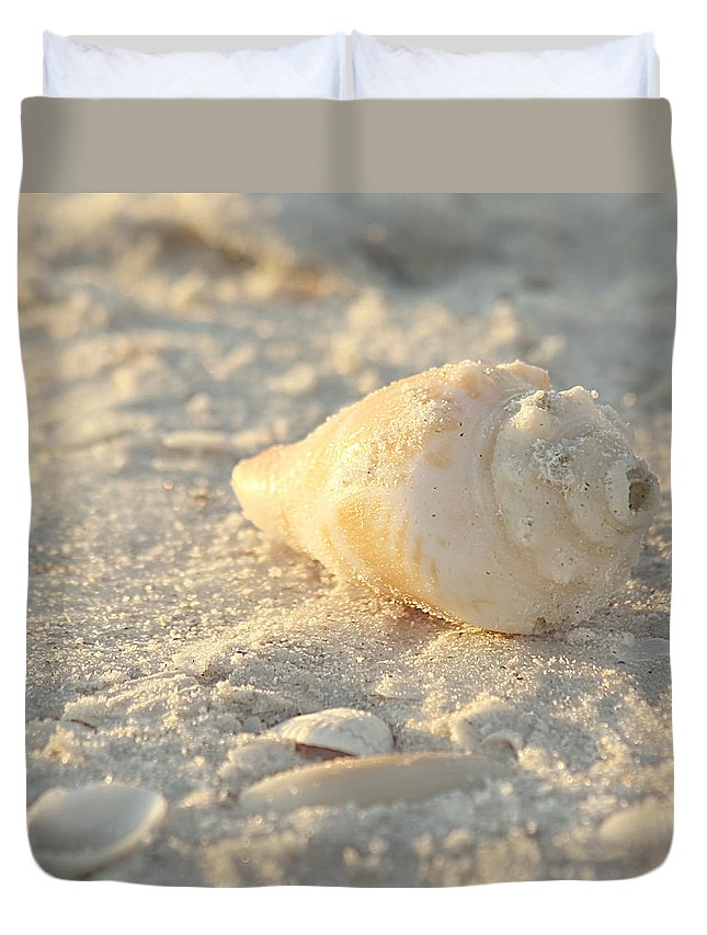 Nature Duvet Cover featuring the photograph Sea Shells by Kim Hojnacki