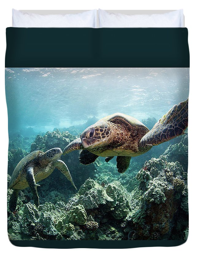 Underwater Duvet Cover featuring the photograph Sea Turtles by M Swiet Productions