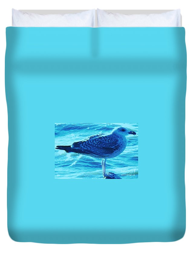 Animals Duvet Cover featuring the photograph Seagull Basking In The Sun by Eric Schiabor