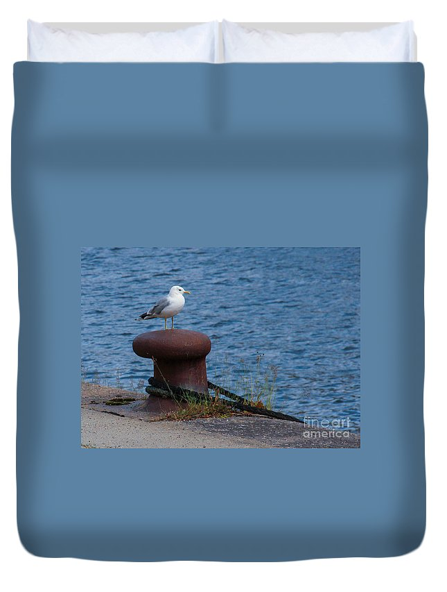 Seagull Duvet Cover featuring the photograph Seagull On A Bollard by Kerstin Ivarsson