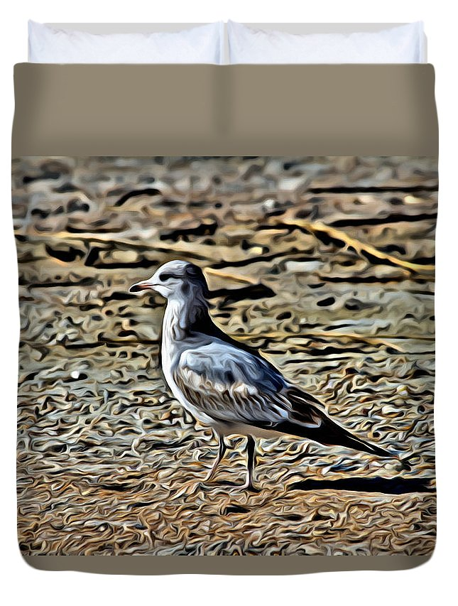 Seagull Duvet Cover featuring the photograph Seagull On The Beach by Alice Gipson