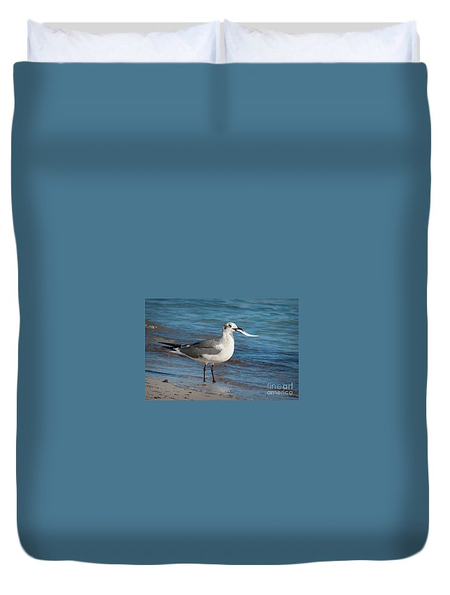 Seagull Duvet Cover featuring the photograph Seagull With Fish 1 by Photos By Cassandra
