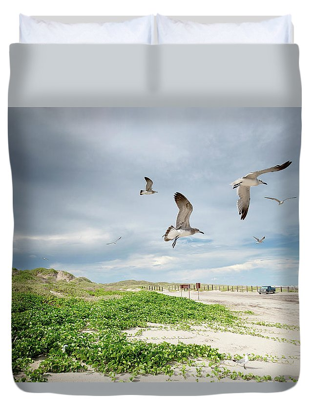 Scenics Duvet Cover featuring the photograph Seagulls In Flight At North Padre by Olga Melhiser Photography