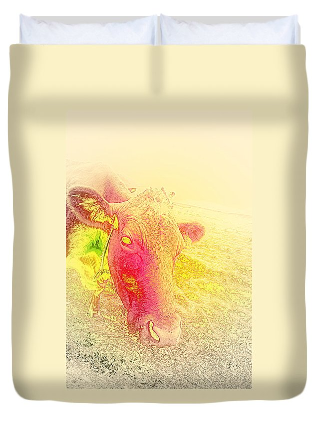 Cow Duvet Cover featuring the photograph Searching For Flowers But Just Finding Mud by Hilde Widerberg