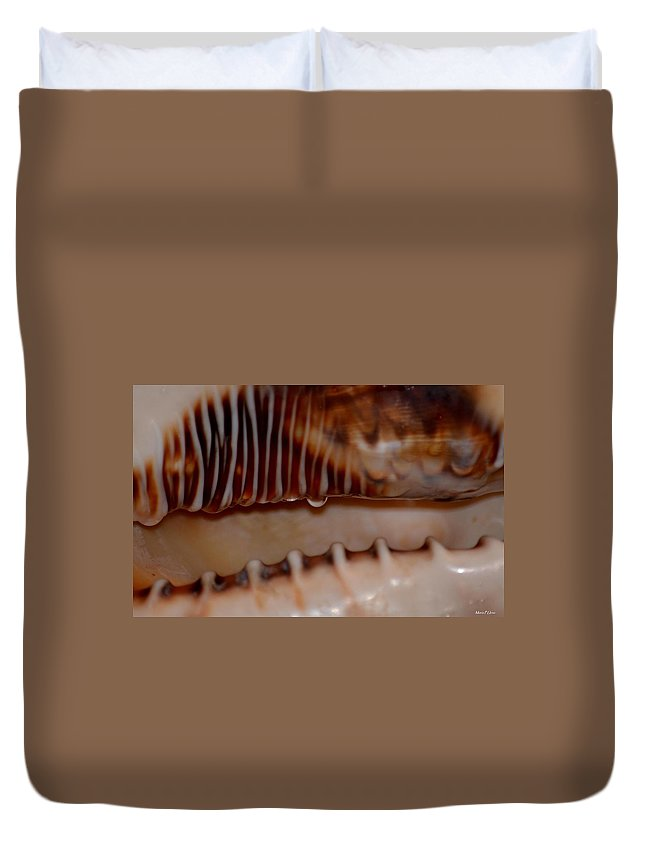Seashell Abstract 3 Duvet Cover featuring the photograph Seashell Abstract 3 by Maria Urso