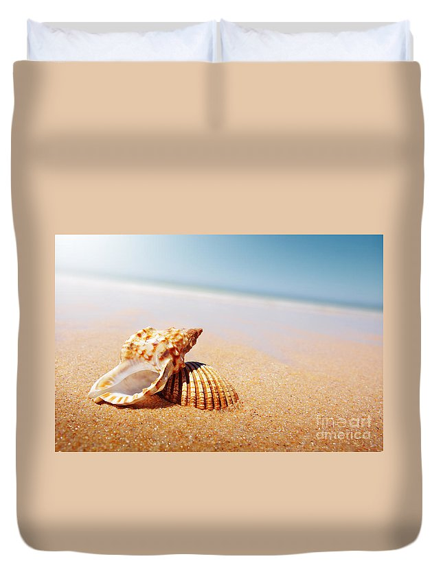 Abstract Duvet Cover featuring the photograph Seashell And Conch by Carlos Caetano