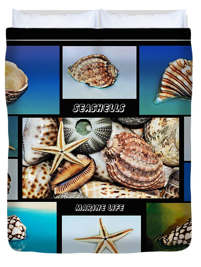 Photography Duvet Cover featuring the photograph Seashell Collection 2 by Kaye Menner