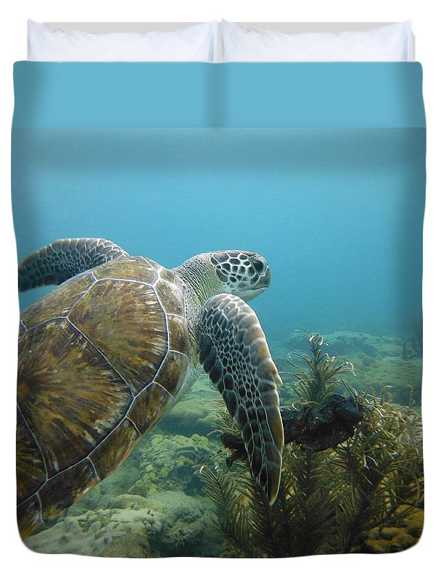 Sea Turtle Duvet Cover featuring the photograph Seaturtle  by Daniel Smith