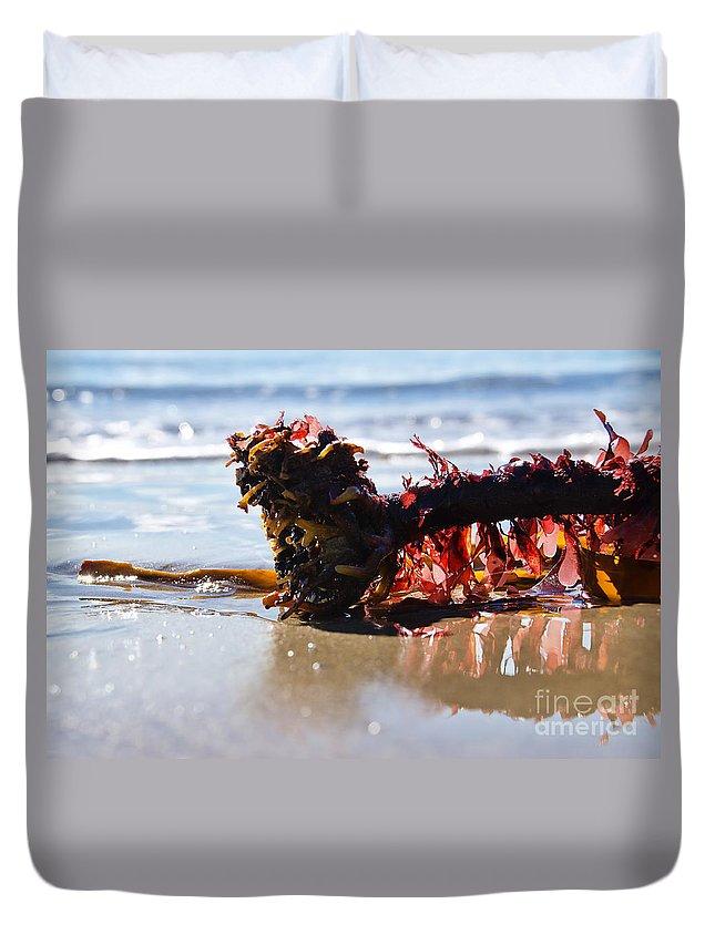 Lyme Regis Duvet Cover featuring the photograph Seaweed 2 by Susie Peek