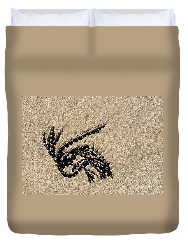 Seaweed Duvet Cover featuring the photograph Seaweed On Beach by Steven Ralser