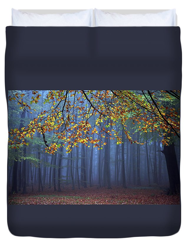 Autumn Duvet Cover featuring the photograph Seconds Before The Light Went Out by Roeselien Raimond