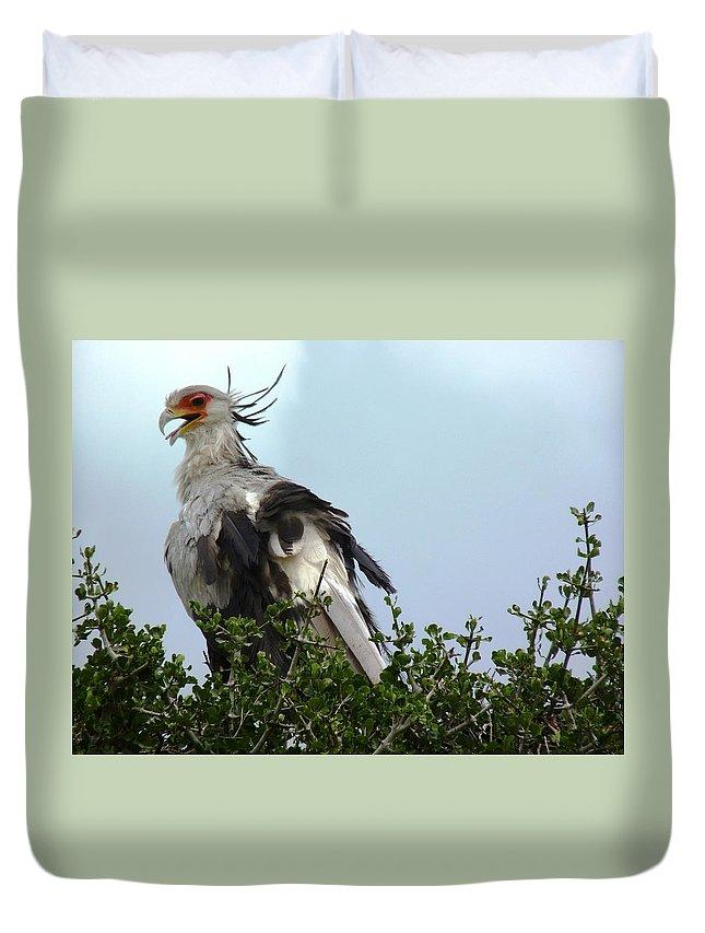 Secretary Bird Duvet Cover featuring the photograph Secretary Bird by Tony Murtagh