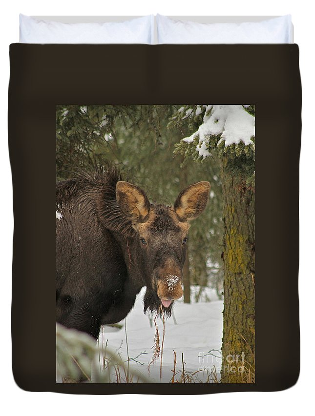 Moose Duvet Cover featuring the photograph See You by Rick Monyahan