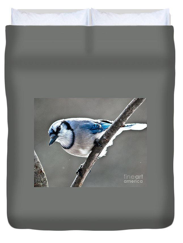 Landscapes Duvet Cover featuring the photograph Seeing Blue by Cheryl Baxter