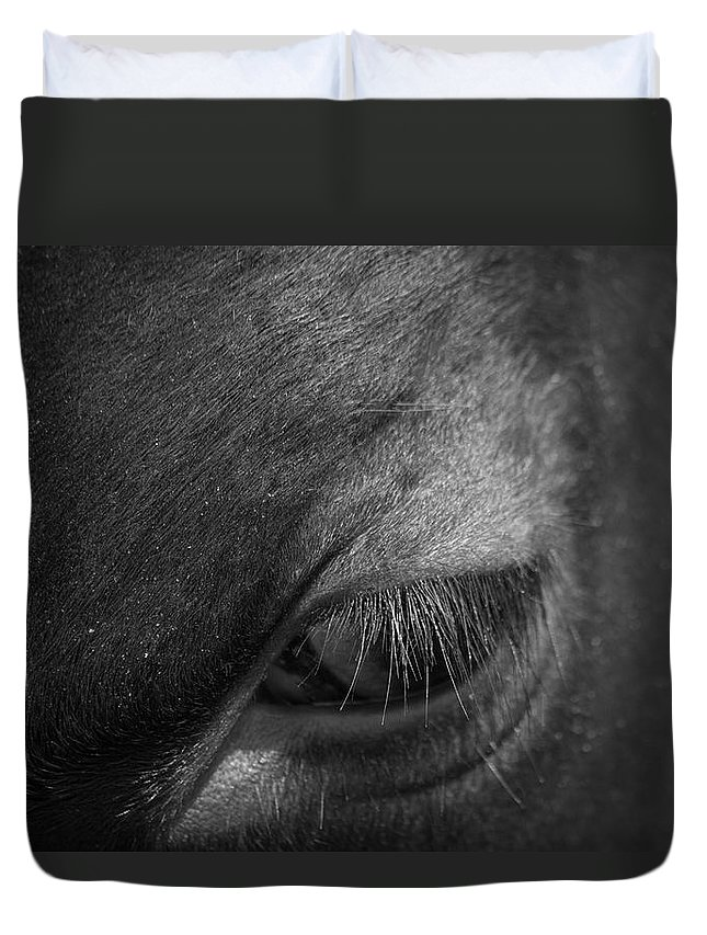 Seeing Into The Soul Duvet Cover featuring the photograph Seeing Into The Soul by Karol Livote