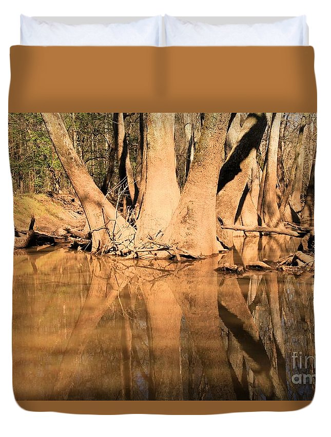 Congaree National Park Duvet Cover featuring the photograph Separate Ways by Adam Jewell