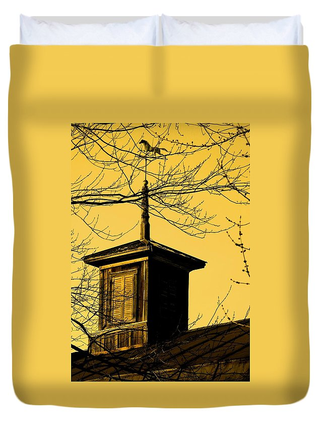 Brown Duvet Cover featuring the photograph Sepiatone Cupola by Debbie Finley