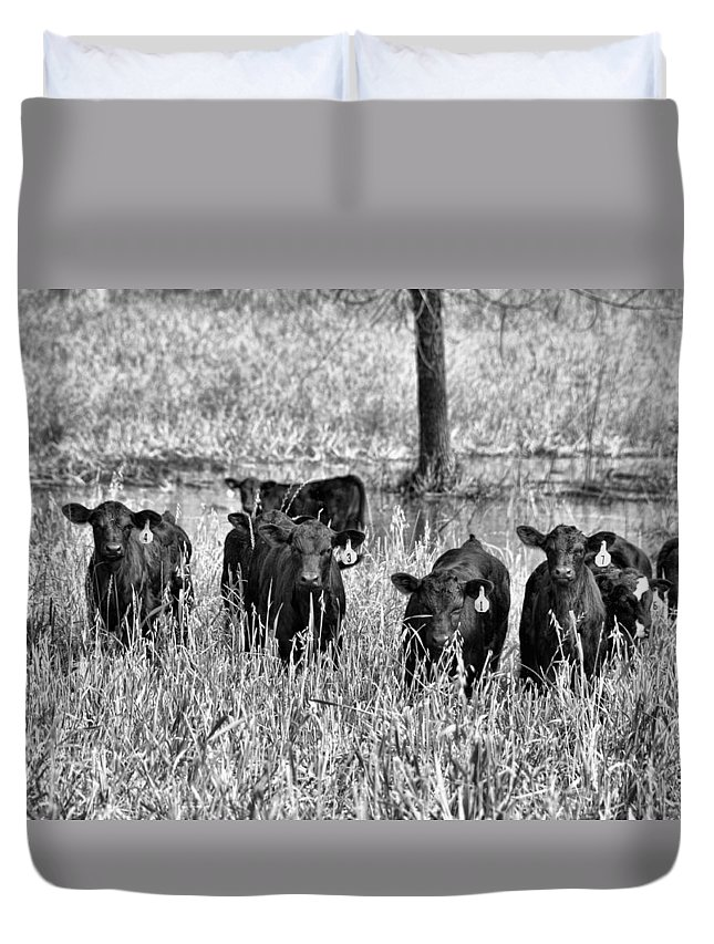 Animals Duvet Cover featuring the photograph Eight Babies by Jan Amiss Photography